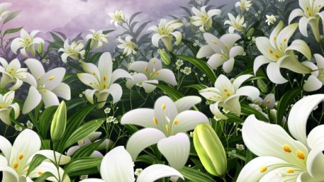 Easter-Lilies-in-the-Field-600x337